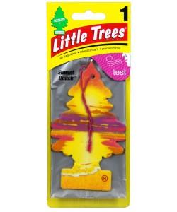 Little Trees - Sunset Beach